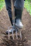 与铁锹的开掘的春天土壤 库存图片