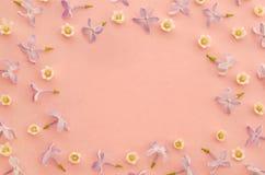 与铃兰和淡紫色花的创造性的春天构成在粉红彩笔纸背景 开花的概念 免版税库存图片