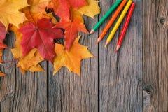 与铅笔和槭树l的秋天创造性的艺术绘画backgrounf 免版税图库摄影
