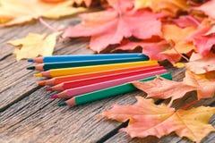 与铅笔和槭树l的秋天创造性的艺术绘画backgrounf 免版税库存照片