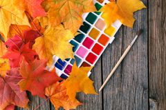 与铅笔和槭树l的秋天创造性的艺术绘画backgrounf 图库摄影
