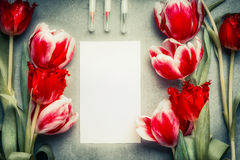 与铅笔和郁金香的空白的白色卡片开花,顶视图,框架 抽象问候 免版税库存照片