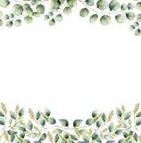 与银元和种子玉树叶子的水彩花卉框架卡片 与分支的手画边界和 免版税库存照片