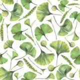 与银杏树biloba绿色叶子的无缝的样式  库存照片