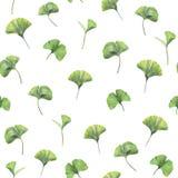 与银杏树biloba绿色叶子的无缝的样式  库存图片