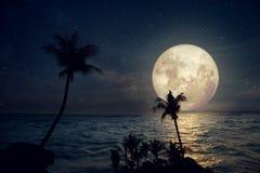 与银河星和满月的美丽的热带海滩在夜空 免版税库存照片