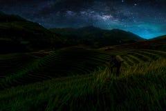 与银河星系的风景 与星和silhou的夜空 库存照片