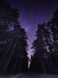 与银河踪影的stary夜空  库存图片
