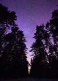 与银河踪影的stary夜空  库存照片