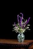与银色鞋带的墨西哥贤哲在马赛克花瓶开花 图库摄影