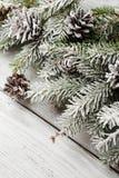 与锥体和分支的圣诞节土气背景 免版税库存图片
