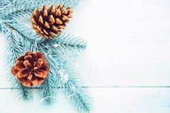 与锥体和诗歌选的圣诞树 库存照片