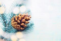 与锥体和诗歌选的圣诞树 免版税库存照片
