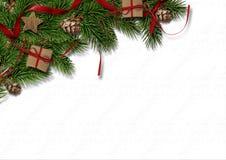 与锥体的圣诞节冷杉木在白色纹理背景 免版税库存图片