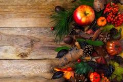 与锥体的秋天问候在木桌上 免版税库存图片