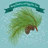与锥体的绿色毛皮树分支在雪下 免版税库存照片