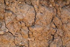 与镇压的干燥地球 免版税库存照片