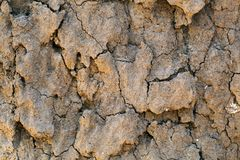 与镇压的干燥地球 库存图片