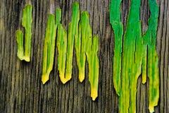 与镇压的木表面,盖用干黄绿色油漆 宏指令 免版税库存图片