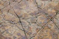 与镇压的石织地不很细岩石 免版税库存照片