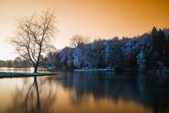与镇静relfection的错误颜色湖风景 免版税库存照片