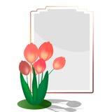 与镜子的红色郁金香 库存图片