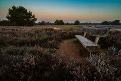 与长凳,德国的领域 图库摄影