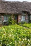与长得太大的草坪的老传统爱尔兰村庄 免版税库存图片