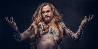 与长的丰富的摆在与在他的肩膀的狐狸皮肤的头发和充分的胡子的赤裸tattoed红头发人行家男性 免版税库存照片