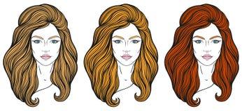 与长的头发的美丽的女孩面孔,组成和中立表示 在线传统化的手拉的妇女画象被设置 图库摄影