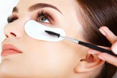 与长的睫毛的妇女眼睛。染睫毛油刷子。 库存照片