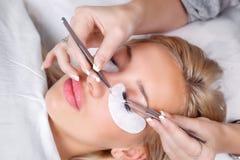 与长的睫毛的妇女眼睛 睫毛引伸 鞭子,关闭,选择的焦点 库存照片