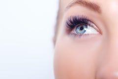 与长的睫毛的妇女眼睛 睫毛引伸 鞭子,关闭,选择的焦点 免版税库存图片