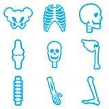 与长的阴影人骨骼的集合平的象 免版税库存图片