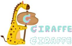 与长颈鹿的动物字母表g 免版税图库摄影