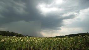 与闪电的雷暴,时间间隔 影视素材