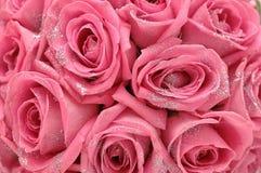 与闪闪发光的玫瑰 库存照片