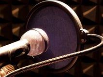 与防风林的Mikrophone 库存图片