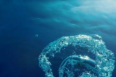 与阳光的水下的泡影 水下的背景泡影 图库摄影