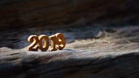 与阳光的第2019年在木日志 免版税库存图片