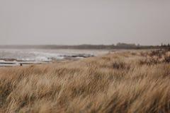 与阴暗云彩的波罗的海costline强的风暴 免版税库存图片