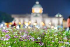 与阿南达Samakhom Thro的一束美丽的桃红色和白花 库存照片