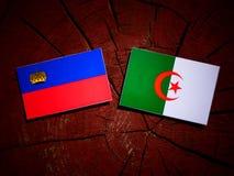 与阿尔及利亚的旗子的列支敦士登旗子在被隔绝的树桩 库存例证
