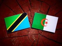 与阿尔及利亚的旗子的坦桑尼亚的旗子在被隔绝的树桩 库存例证