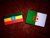 与阿尔及利亚的旗子的埃赛俄比亚的旗子在被隔绝的树桩 向量例证