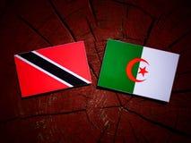 与阿尔及利亚的旗子的特立尼达和多巴哥旗子在树桩isol 免版税库存照片