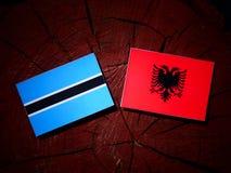 与阿尔巴尼亚旗子的博茨瓦纳旗子在被隔绝的树桩 库存例证