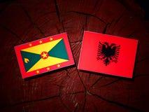 与阿尔巴尼亚旗子的格林纳达旗子在被隔绝的树桩 向量例证