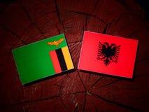 与阿尔巴尼亚旗子的赞比亚旗子在被隔绝的树桩 库存例证