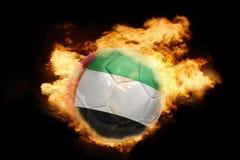 与阿拉伯联合酋长国的旗子的橄榄球球火的 图库摄影